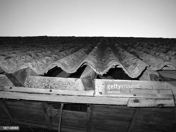 crusty ferme sur le toit