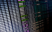 Cryptocurrency Mining Craze: a  Minining Software at Work     (horizontal)