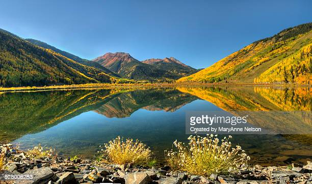 Crystal Lake and flowers fall panorama