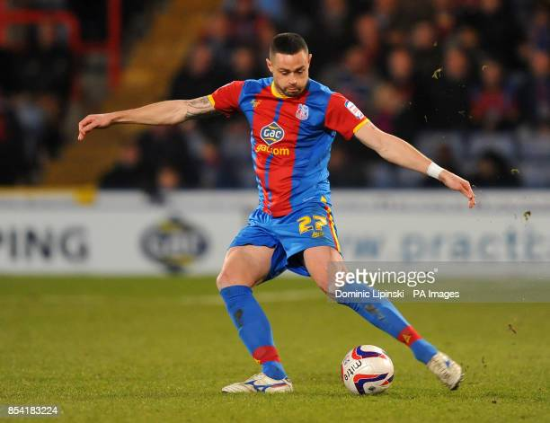 Crystal Palace's Damien Delaney during the npower Championship match at the Selhurst Park London