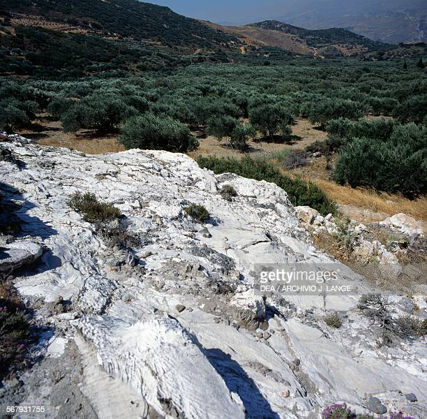 Crystallisation on the White mountains near Dafni with olive trees and the Lafka Ori or Madares mountain range in the background Crete Greece