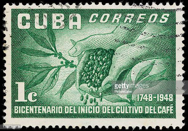 Cuba coffee plant and beans postage stamp