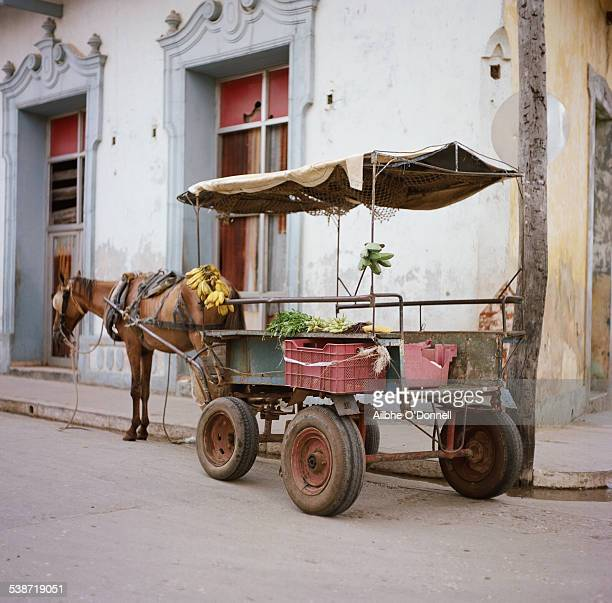 Cuba, Trinidad street scene - horse and cart