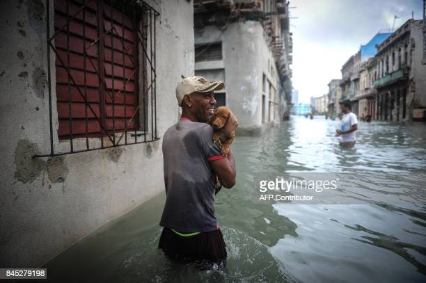 Cuban carrying his pet wades through a flooded street in Havana on September 10 2017 Deadly Hurricane Irma battered central Cuba on Saturday knocking...