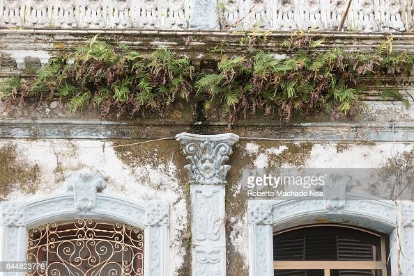 Cuban colonial weathered architecture details Ferns growing in house facade Economic hardship has forced many people to keep their property without...
