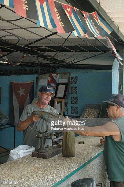 Cuban lifestyle male vendor weighing the product and giving it to customer