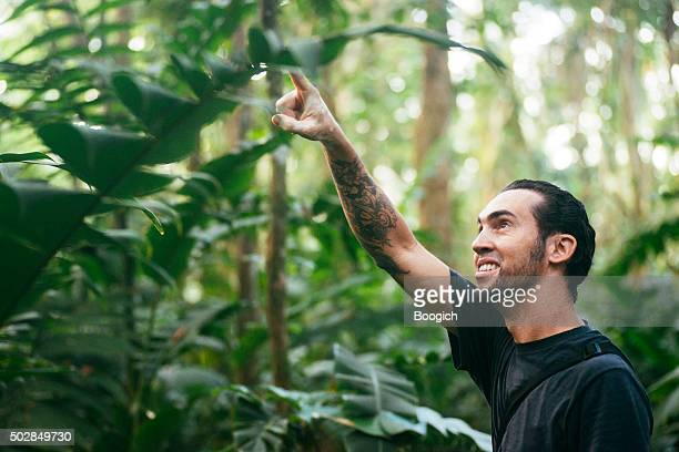 Cuban Man Points Up Trees in Costa Rica Rainforest Wetlands