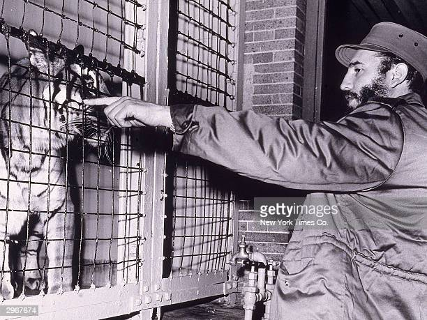 Cuban president Fidel Castro faces and points at a Bengal tiger in a cage at the Bronx Zoo New York City April 24 1959