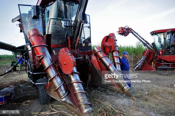 Cuban sugarcane workers are seen during the zafra the sugarcane harvest in the eastern province of Camagüey on December 1st in Camagüey Cuba...