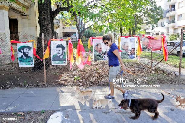 Cuban woman walks dogs as she passes in front of photos of late Revolution leader Fidel Castro Che Guevara and Camilo Cienfuegos in front of the...