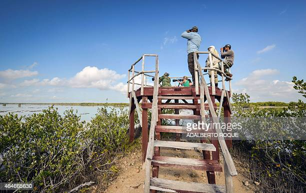 Cubans and tourists from the US and Russia take pictures of birds in Cienaga de Zapata Bay of Pigs Matanzas Cuba 200 km southeast of Havana on...