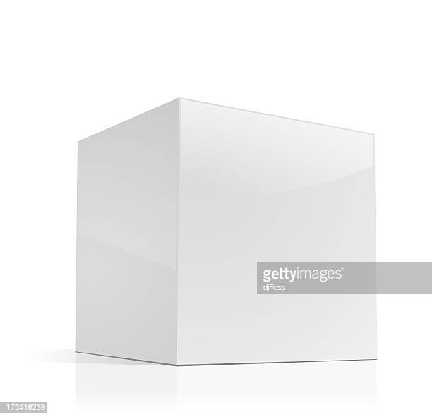 Cube-shaped Software Package Box