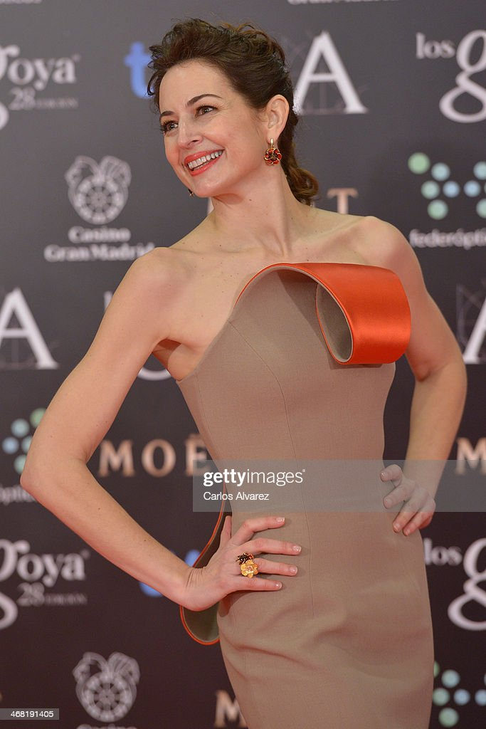 Cuca Escribano attends Goya Cinema Awards 2014 at Centro de Congresos Principe Felipe on February 9, 2014 in Madrid, Spain.