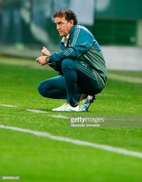 Cuca head coach of Palmeiras in action during the match between Palmeiras and Chapecoense for the Brasileirao Series A 2017 at Aliians Parque Stadium...
