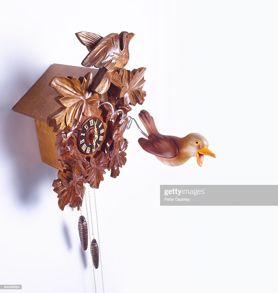 cuckoo coming out of cuckoo clock