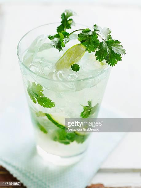 Cucumber Cilantro Mojito