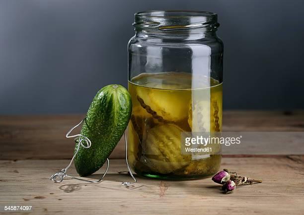 Cucumber manikin mourning at gherkin jar