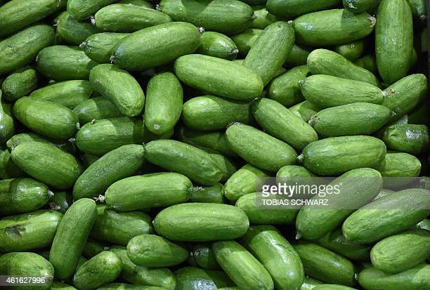 Cucumbers are on display at the booth of Hungary during the opening day of the 'Gruene Woche' agricultural fair on January 16 2015 in Berlin The...