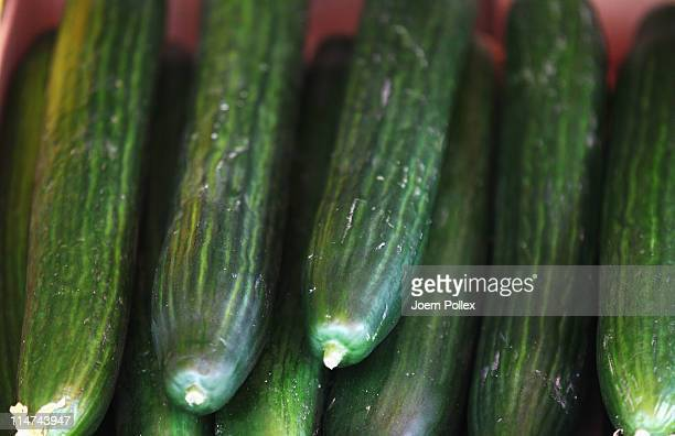 Cucumbers lie on a table on May 26 2011 in Hamburg Germany German health authorities have announced they suspect cucumbers tomatoes and salad grown...
