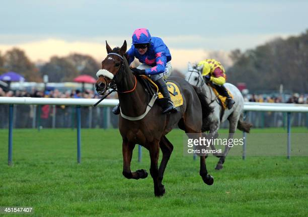 Cue Card ridden by Joe Tizzard wins The Betfair Steeple Chase held at Haydock Racecourse on November 23 2013 in Haydock England