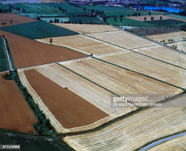 Cultivated fields in the plain of Piacenza EmiliaRomagna Italy