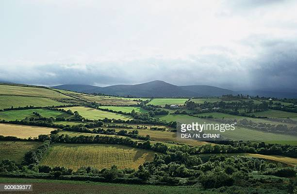 Cultivated fields Roundwood County Wicklow Ireland