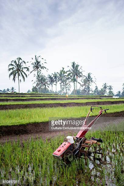 Cultivator used for ploughing paddy fields near Ubud, Bali, Indonesia