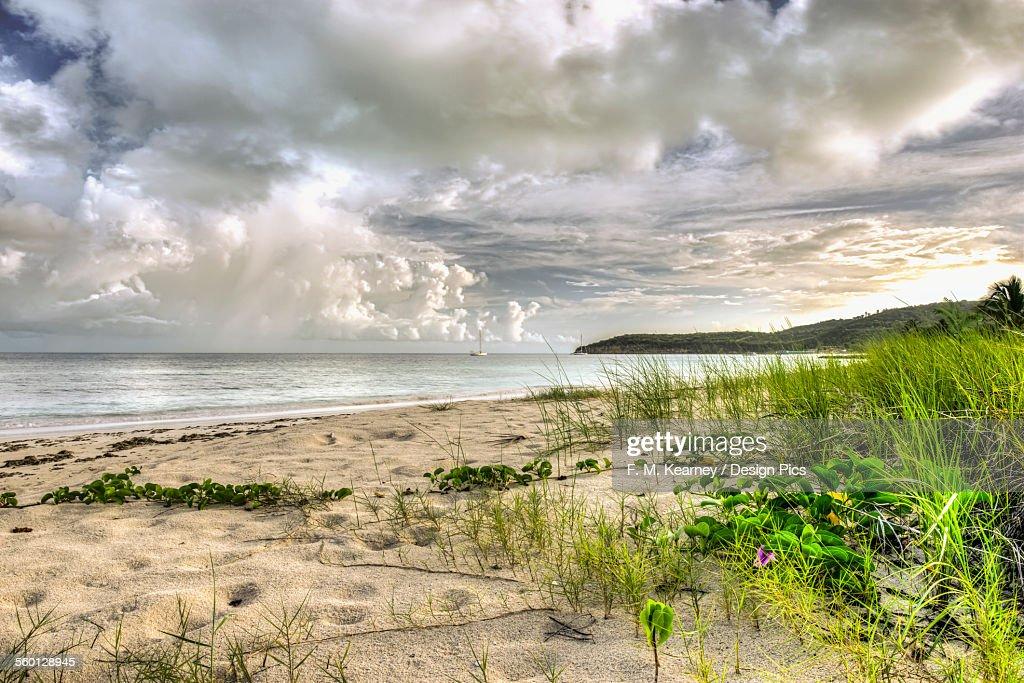 Cumulus clouds over Dickenson Bay