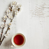Cup of black tea and branches of blossoming apricot on old wooden shabby background. Copy space.