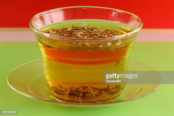 Cup of tea with fennel, close-up