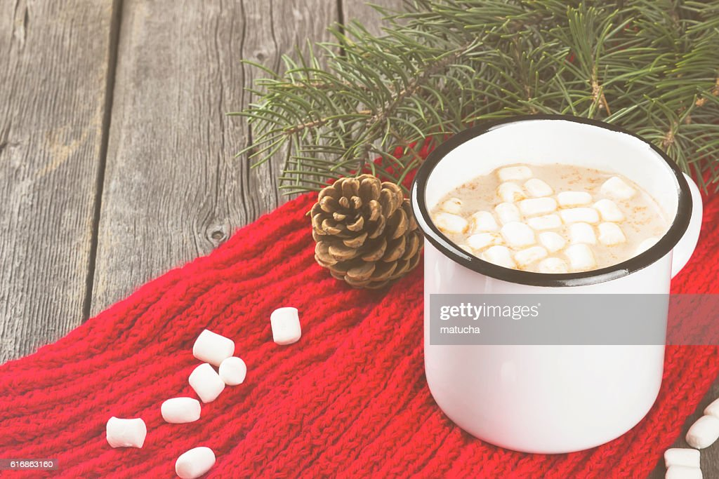 Cup of hot cocoa with cream and marshmallows : Stock Photo