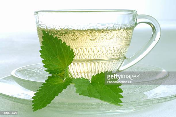 Cup of nettle tea, close up