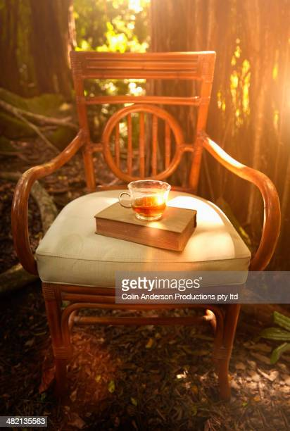 Cup of tea and book on armchair in woods