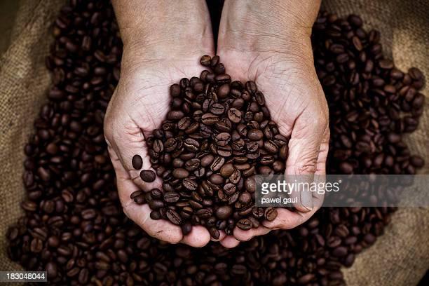 カップコーヒー豆を持つ手