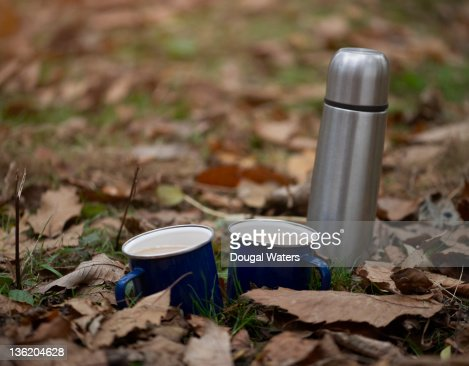 Cups of tea with flask in Autumn leaves. : ストックフォト