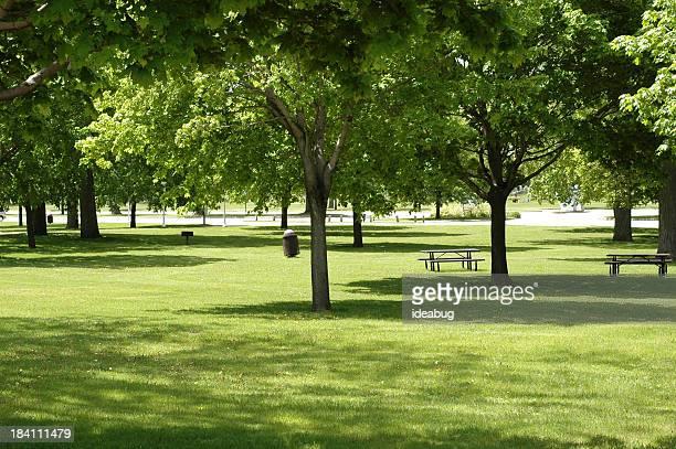 Curiously Empty Park