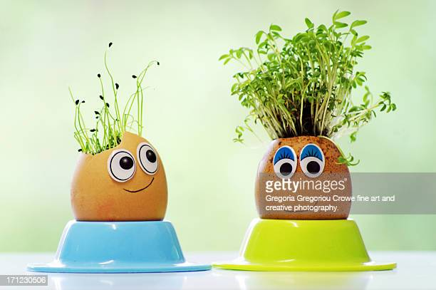 Curly cress and chives