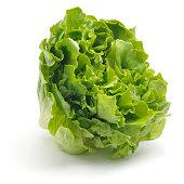Curly Leaf Lettuce