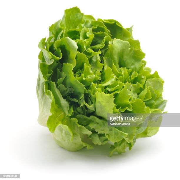 Curly Feuille de salade
