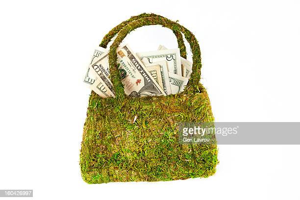 US currency in a moss-covered purse