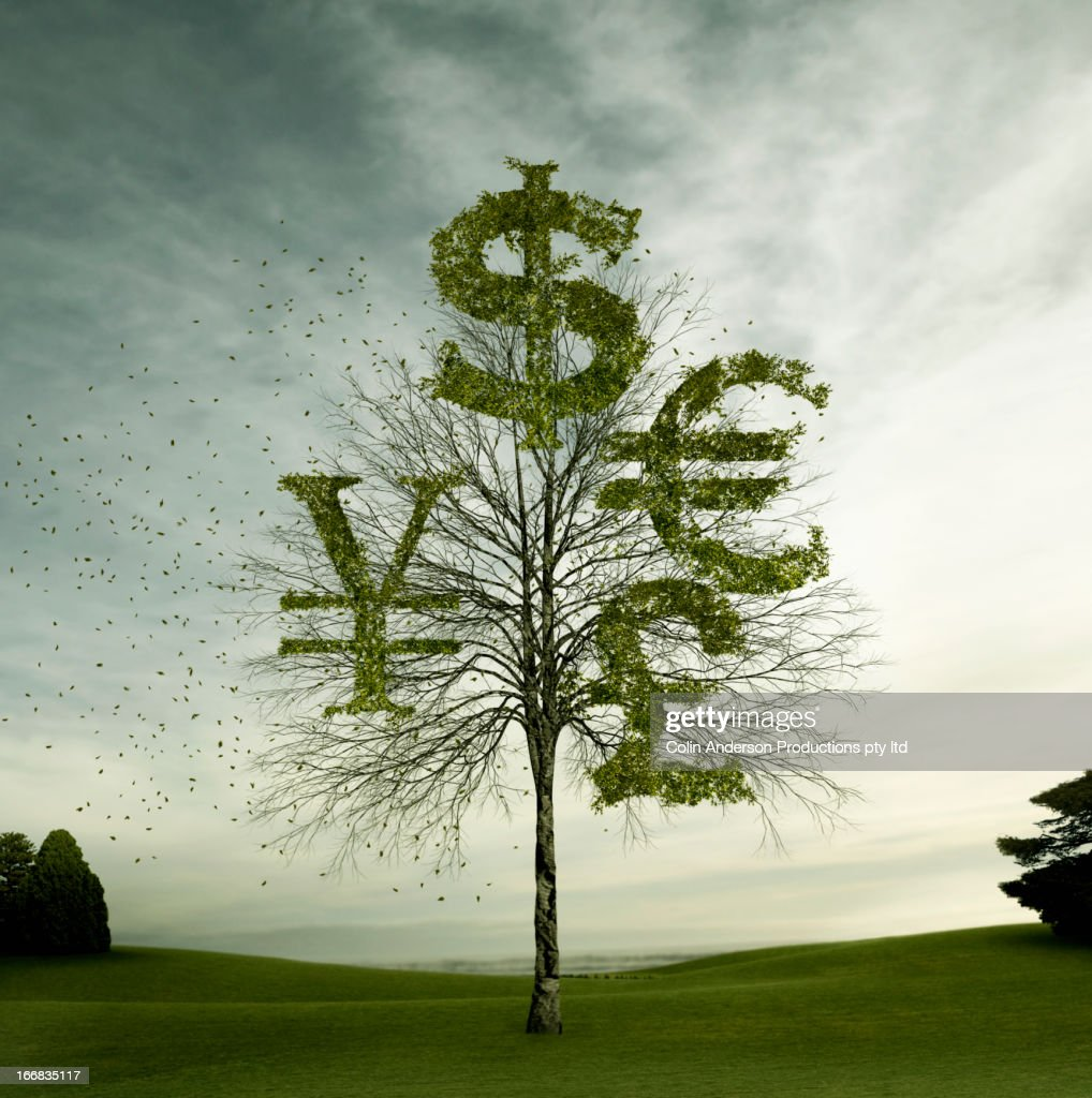 Currency symbols carved in tree in field : Stock Photo