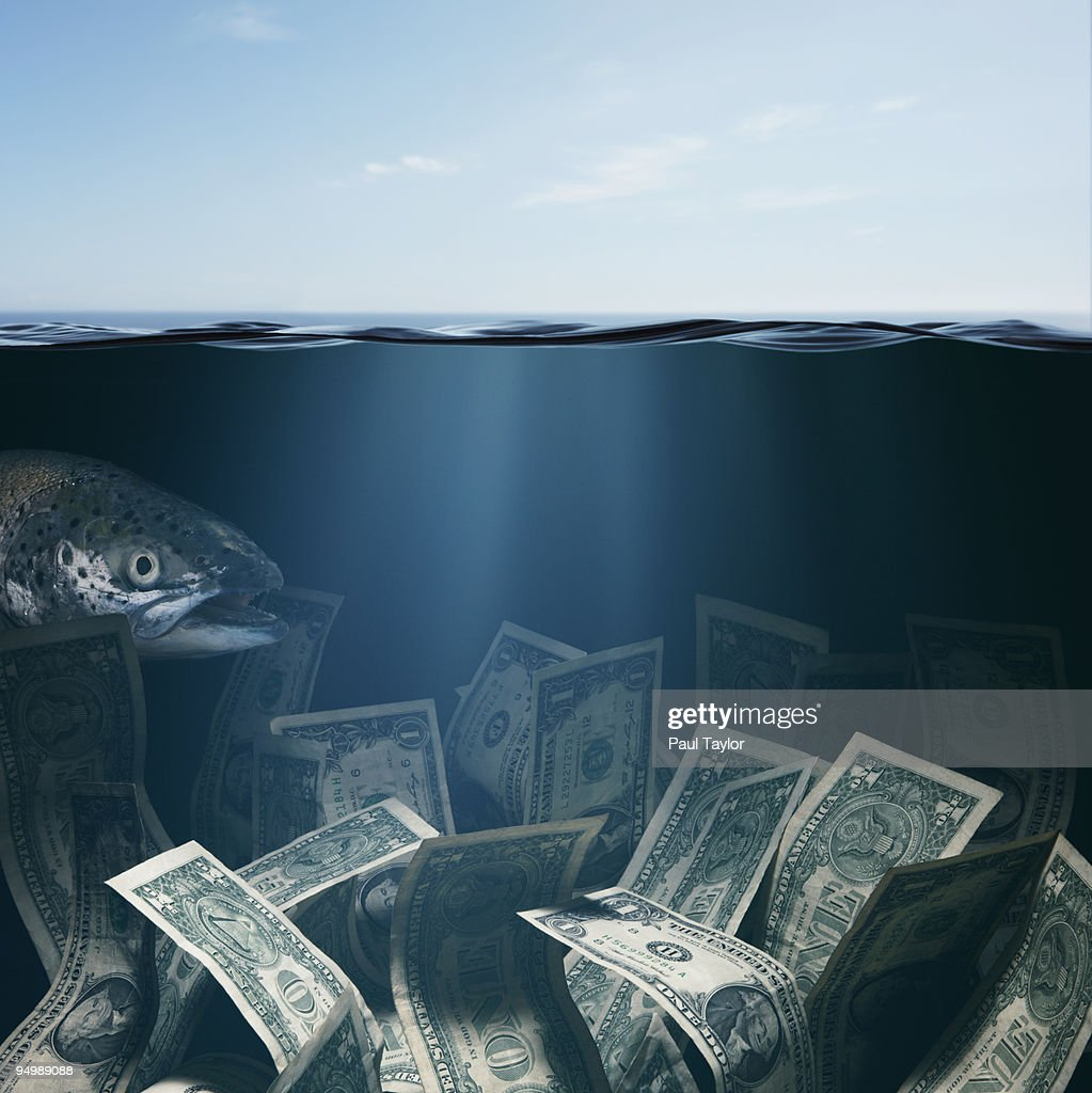 Currency Underwater : Stock Photo