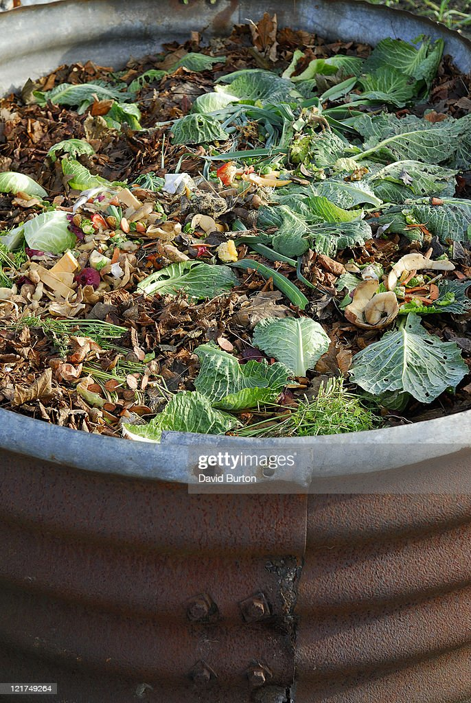 Currugated Metal Compost Bin With Kitchen And Garden Waste : Stock Photo