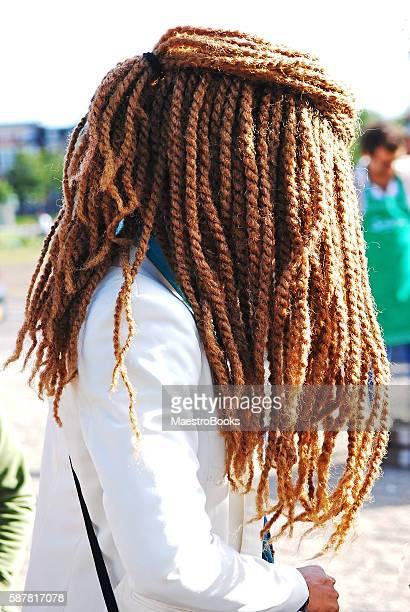 Curtain of Rasta Hair.