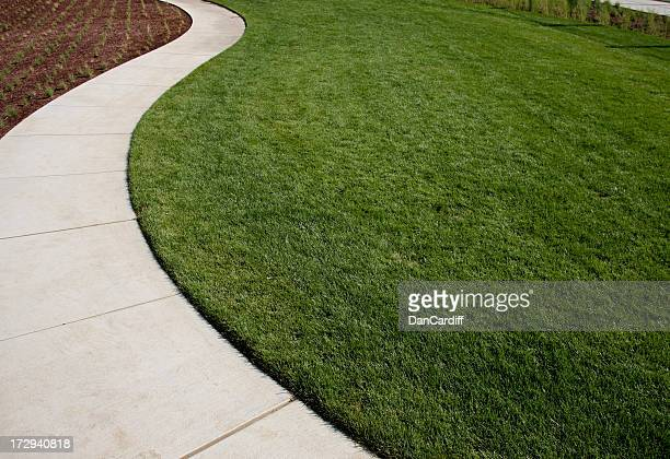 Curved concrete path dividing grass from a garden