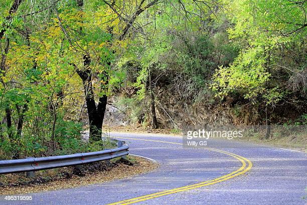 100 curves road