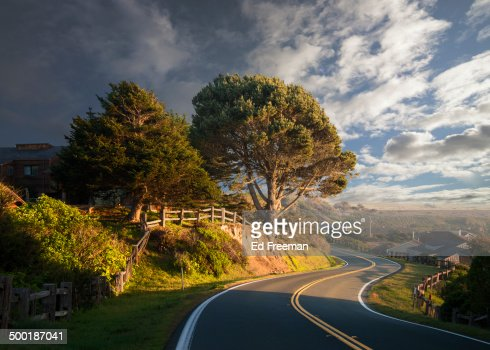 Curving Road, Late Afternoon