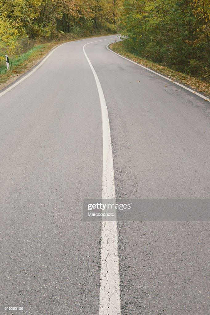 Curvy asphalt road through forest in autumn : Foto de stock