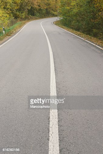 Curvy asphalt road through forest in autumn : Foto de stock