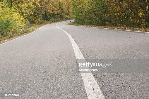 Curvy asphalt road through woods in autumn : Stock Photo
